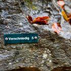 Routenbezeichnung am Felsen