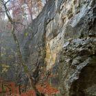 Der Kletterfelsen Roggehusersteibruch