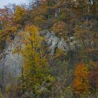 Der Kletterfelsen am Hertenstein